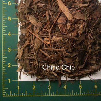 Chino Chip