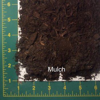 Rotoilling Mulch
